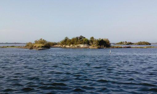 laguna-natura-barc IMG_20170805_183048_cut