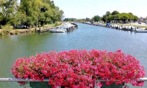 lagun-barche-fiori IMG_20170808-cut1
