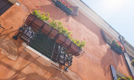 centro-fiori matism_9330730916_nc-nd